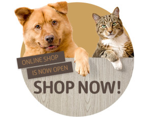 551x419_Pet_Shop_thumb